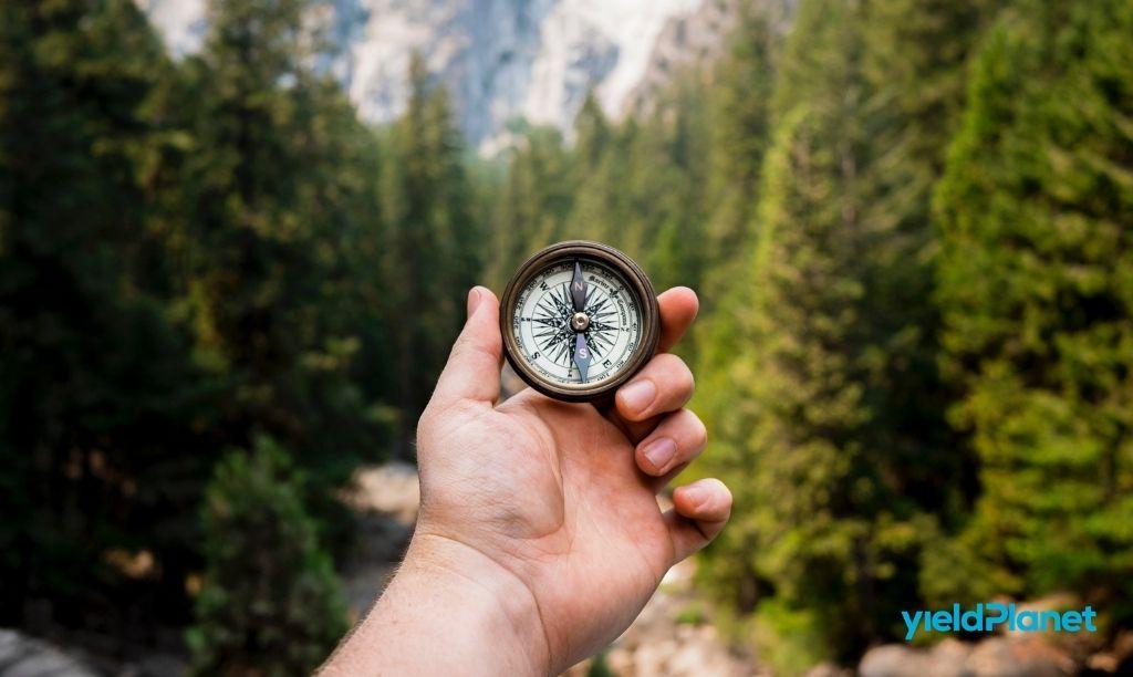 Top 7 artykułów na temat Revenue Managementu